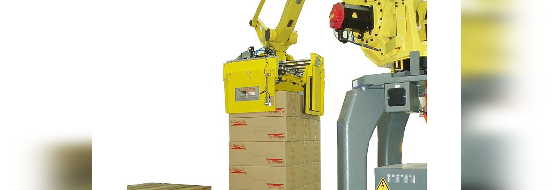 Robotic palletizing cell for boxes and bags