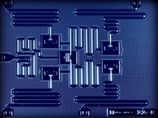 Five qubit processor, Courtesy of IBM