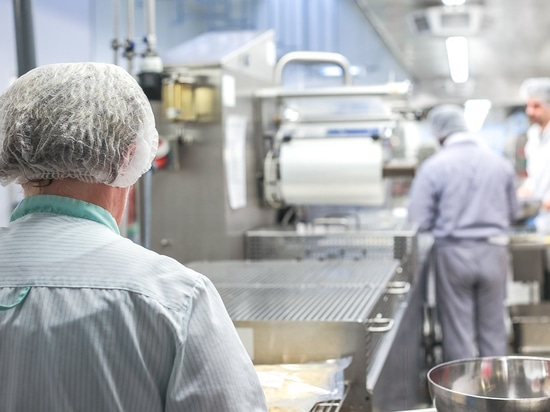 The human impact of robots in food