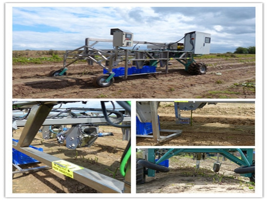food industry linear robot for agriculture