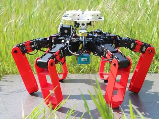 This Walking Robot Ditches GPS to Navigate Like a Desert Ant