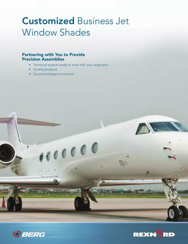 Customized business jet