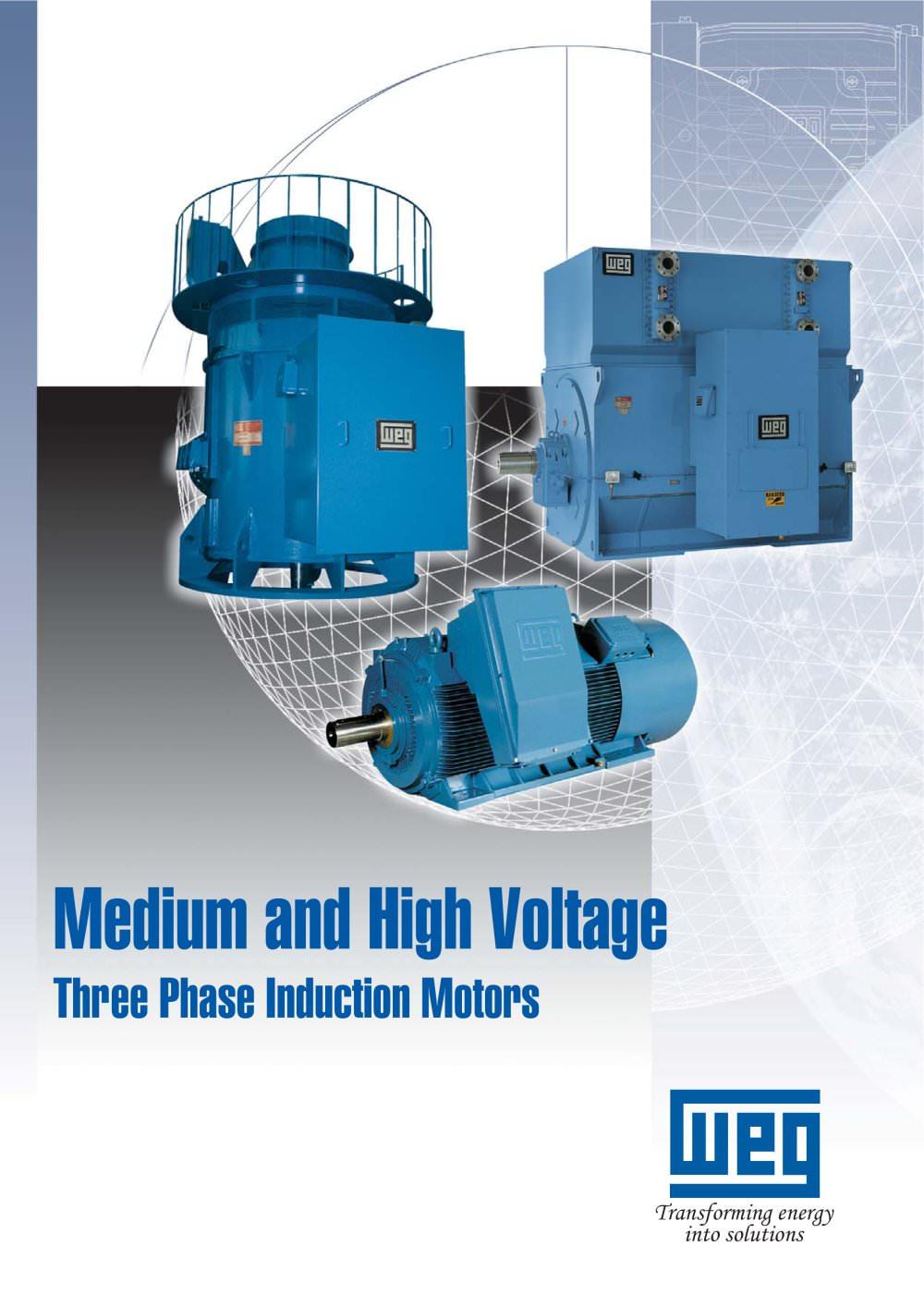 DC motor - WEG - PDF Catalogue | Technical Documentation | Brochure