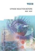 3 Phase Induction Motors-AEEF AEVF
