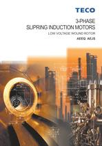3 Phase slipring induction motors-AEEQ AEJS