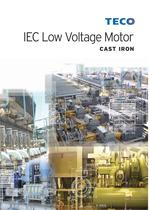 EC Low Voltage Motor
