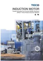 EPACT Three Phase Induction Motors