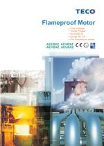 Flameproof Motor