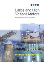 Large and High Voltage Motors