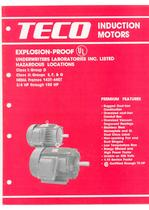 TECO Explosion-Proof Induction Motor-Nema Frame