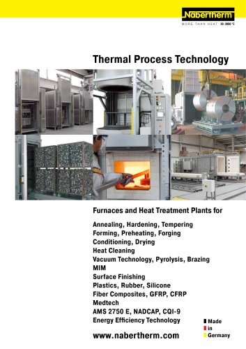 Thermal Process Technology I