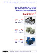 A.C. 3-phase Inverter duty motors MTES