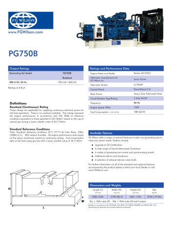 pg750b gas generator set
