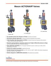 ACTIONAIR® Gas and Oil Valves
