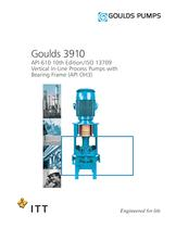 Goulds 3910