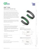 Rubber Spring Return (RSR?) Seals