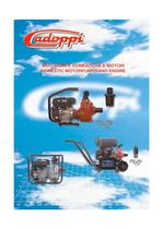 CATALOGUE MOTOPUMPS DOMESTIC