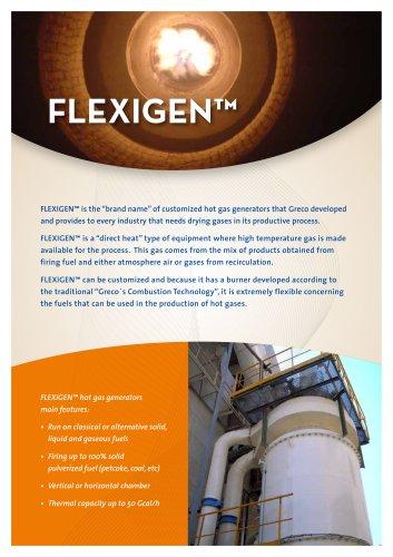 FlexiGen