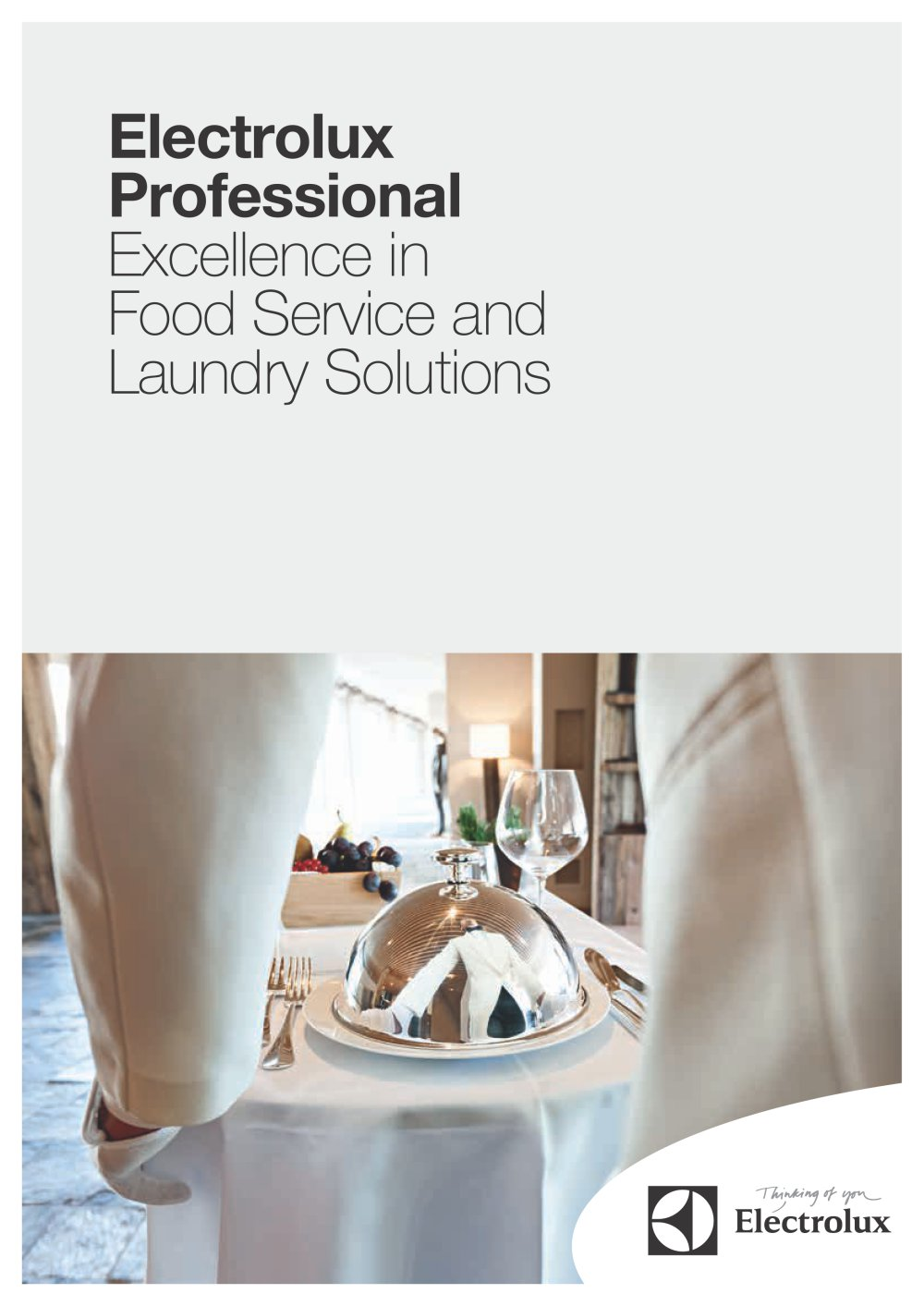 Excellence in Food Service and Laundry Solutions - Electrolux ...