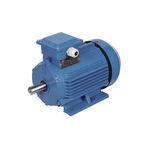 motor elétrico trifásico / assíncrono / 230V / 220 V