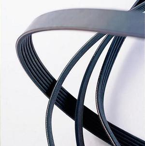 ribbed-belt