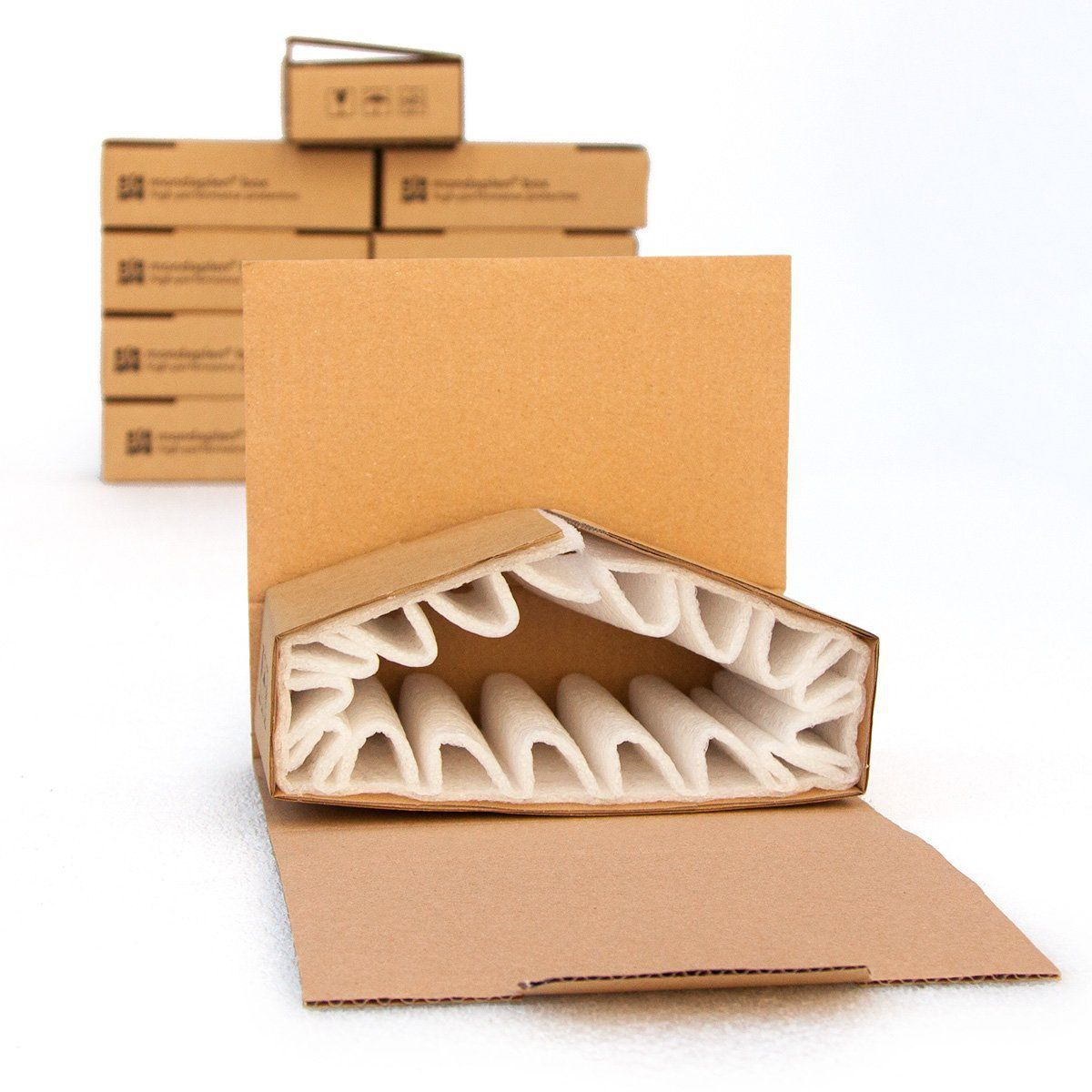Electronic equipment packaging / anti-static - Eredi Caimi