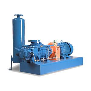 liquid ring pump vacuum system