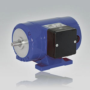 shunt-wound motor / DC / synchronous / wound rotor