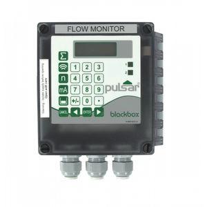 ultrasonic flow monitor