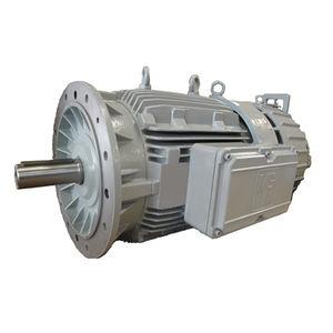 heavy-duty brake motor