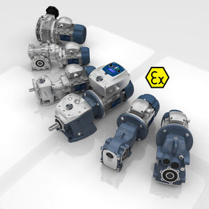 ATEX gearbox / worm