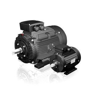AC motor / asynchronous / 60 V / high-efficiency