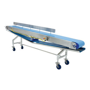 belt conveyor / for the food industry / food / stainless steel