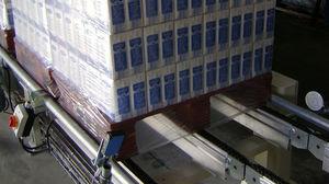 chain conveyor / pallet / stationary