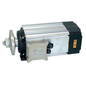 AC motor / induction / 400 V / 690 V