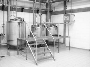 continuous emulsifier / for the food industry