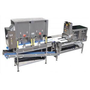 melon chunking-slicing machine