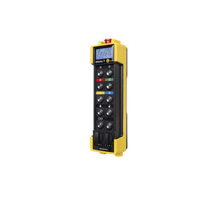 radio remote control / 10-button / with integrated display / explosion-proof