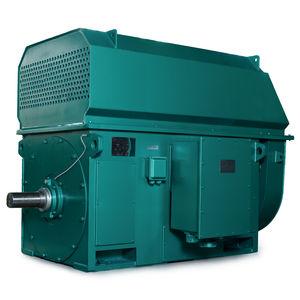 high-voltage motor