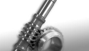 worm gear / spiral / shaft