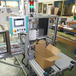 lateral case packer / semi-automatic / package / carton