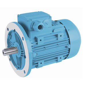 three-phase brake motor