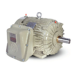 AC motor / induction / 220 V / variable-speed