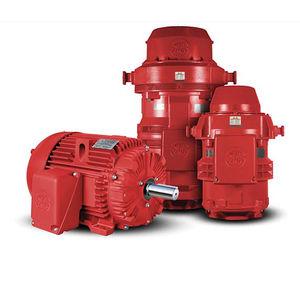 pump motor / AC / induction / 220 V
