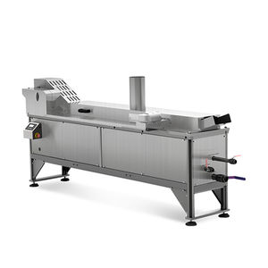 continuous industrial fryer