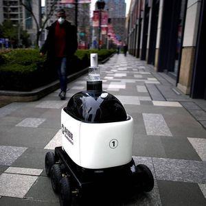 mobile surveillance robot
