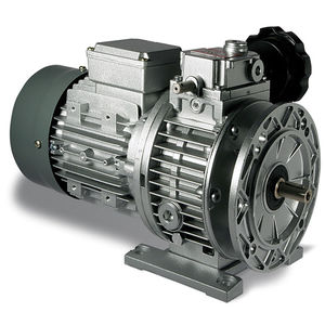Mechanical variable speed drive with planetary reduction gear