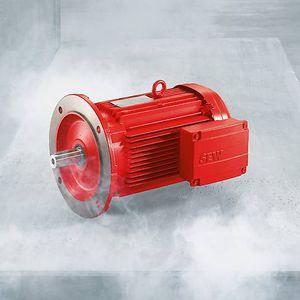explosion-proof motor