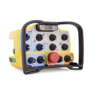 radio remote control / with buttons / custom / industrial