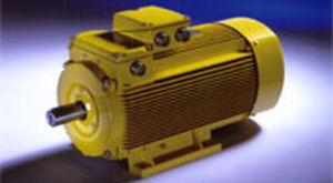 AC motor / three-phase / induction / IP55
